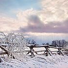 Road to Salem - Winter Landscape by Renee Dawson