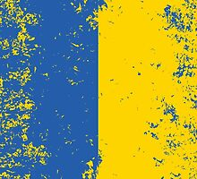 Flag of Ukraine by quark