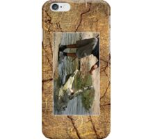 Crocodile Cellphone Case 3b iPhone Case/Skin