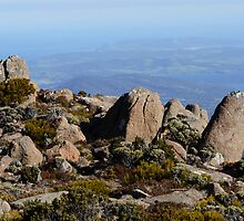 View From The Top, Mount Wellington, Tasmania by GrannyMay