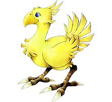 Chocobo Final Fantasy Photographic Print