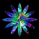 Flower pattern by Avril Harris