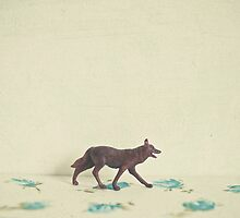 Wandering Wolf by Cassia