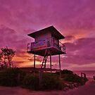 Dawn Patrol by Len  Gunther
