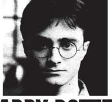 Harry Wanted Poster Sticker
