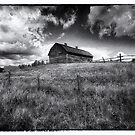 Homestead in Black and White by Myron Watamaniuk