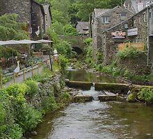 Stock Ghyll, Ambleside, U.K by Pauline Tims