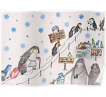 Snow Penguin Poster