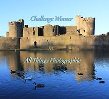 Banner For Challenge by Vicki Spindler (VHS Photography)