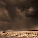Summer Storm Beyond Antelope Flats by Brenton Cooper