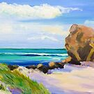 Currumbin Rock Currumbin Beach Queensland by Virginia McGowan