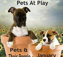 Banner Design for Challenge Winner.  Pets at Play. by Vicki Childs