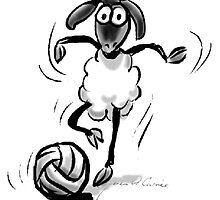 Sheep Footie by Merlin Currie