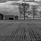 Moody Prairie by Mark Iocchelli
