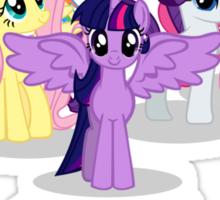 Year of the Pony Sticker