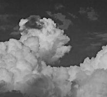©HCS Use Your Illusion IIA Monochromatic by OmarHernandez