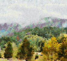 Araluen Valley Views by Fran Woods
