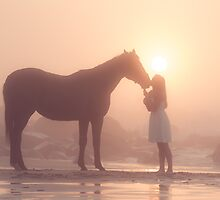 Sunkissed dreams of horses by Brian Edworthy