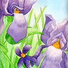 Irises and Violets by ekprazan