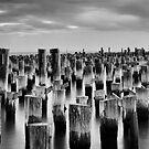 Sentries by Leanne Robson