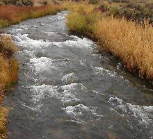 """Desert River"" by Carter L. Shepard by echoesofheaven"