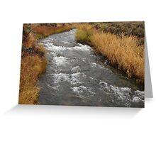 """Desert River"" by Carter L. Shepard Greeting Card"