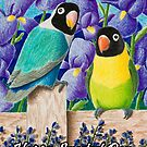 Sweetest Dsy Black-faced Lovebirds by jkartlife