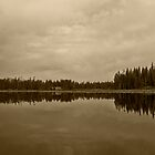 Reflections On Moose Lake I by Brenton Cooper