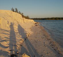Shadows on Iguana Island by jeremycampbell