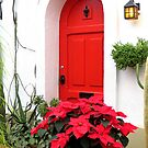 The Red Door by Sandra Fortier