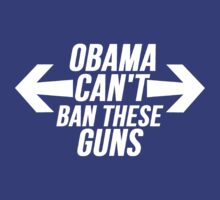 Obama Can't Ban These Guns by Alan Craker