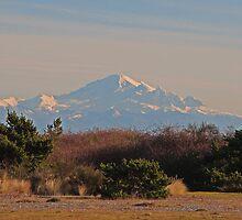 Mount Baker by Lesliebc