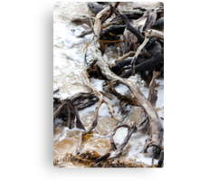 Driftwood washup Canvas Print