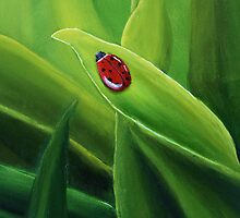 Ladybug in grass by CreativeImage