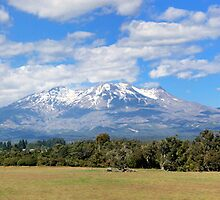 Mighty Ruapehu by Peter Eshuis