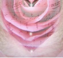 Swan Love Sticker