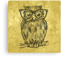 Spectacle Owl Canvas Print