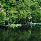 Jetty, Gordon River by mindy23
