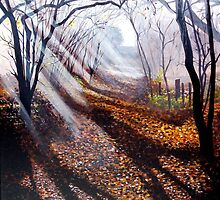 Misty days and sun rays by Paula Oakley