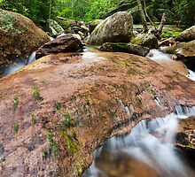 North Carolina Mountain Stream - Boone Fork & the Tanawha Trail by MarkVanDyke