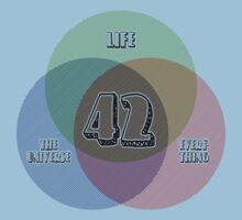 NEW Venn Diagram: Life, the Universe & Everything (for light shirts) Kids Clothes