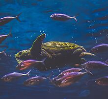 Sea Turtle and Friends by pratt1ak
