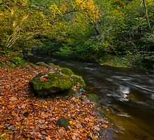 Roslin Glen. by Graeme  Ross