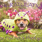 Canine Fine Art & Photography Banner by Kerri Madison