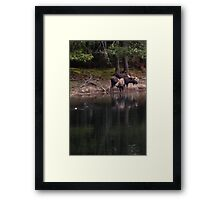 It Was A Strange And Wonderful Relationship Framed Print