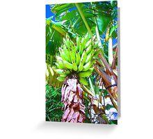 """Hawaii Bannana Tree"" by Carter L. Shepard Greeting Card"