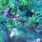 """Manoa Valley Creek"" by Carter L. Shepard by echoesofheaven"