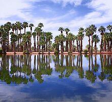 Oasis by fernblacker