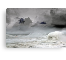 Merlin Rescue Canvas Print