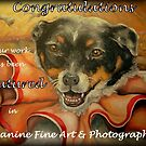 Canine Fine Art & Photography Feature Banner by Pam Humbargar